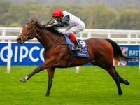 Preview: British Champions Day 2018 (Where, When, Guide, Horses, Full Field by Race, Fashion, Race Info)