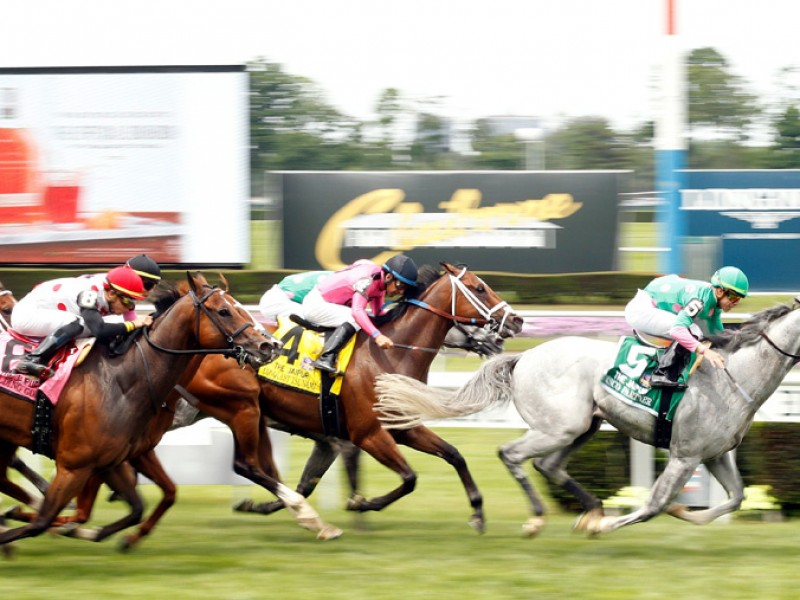 News - List Of United States Graded and Listed Races for 2019