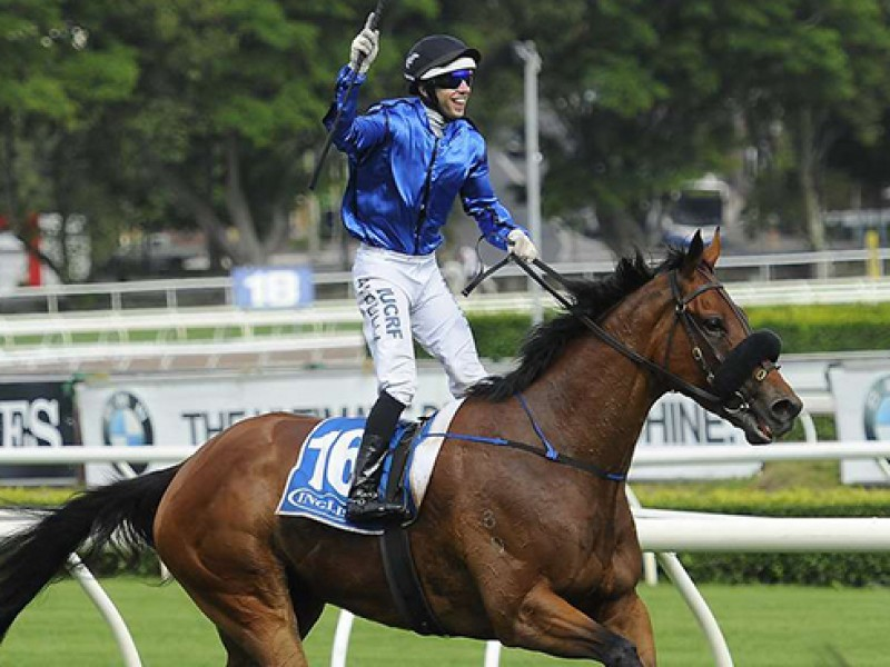 Review: Gr.2 Apollo Stakes in-depth review as well as 2019 f...