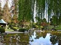 Visit The Japanese Friendship Garden When Racing At Del Mar