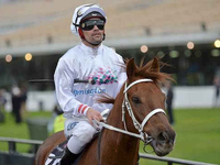 Kiwi Jockey Michael Walker Forced to Dress Down at Flemington