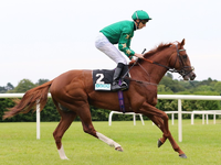 Juddmonte International Stakes