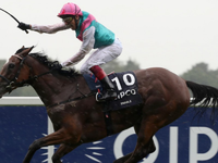 PREVIEW & TRIFECTA - Enable Draws Best Stall In The Arc