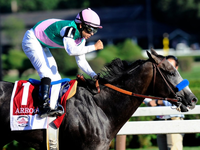 Preview & Trifecta - Breeders' Cup Classic