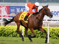 Singapore Gold Cup