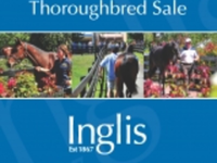 Preview: Inglis - 2018 Autumn Thoroughbred Sale