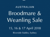 Preview: 2018 Australian Broodmare and Weanling Sale