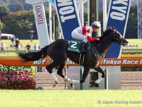Preview: Gr.1 Tokyo Yushun Japanese Derby