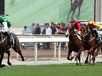 Cruz hoping for stable trifecta in Champions & Chater Cup