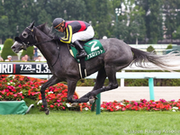 Preview :Gr.1 Yasuda Kinen