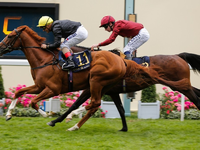 Review: Gr.1 Royal Ascot Gold Cup 2018