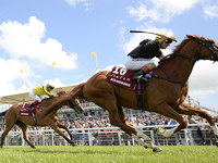 Stradivarius Recovering Well After Injury During Royal Ascot Gold Cup