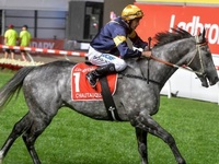D-Day Friday for Chautauqua