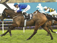 Preview: G.1 Makybe Diva Stakes 2018