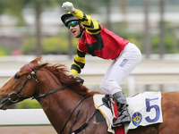 Hong Kong Raider Lucky Bubbles Injured In Japan