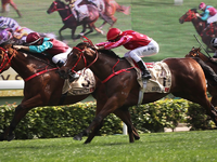 Review: Gr.1 Centenary Sprint Cup ( Horses, Guide, Racecard, 2019 Results & Video)