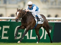 Hornsby Headlines Turf Handicap Feature At Meydan