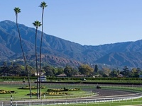Racing At Santa Anita Canceled Indefinitely