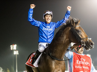 Preview: Dubai World Cup 2019 ( Horses, Analysis, Racecard, 2018 Video)