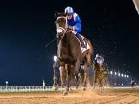 Preview: Gr.2 Godolphin Mile ( Horses, Analysis, Racecard, 2018 Video)