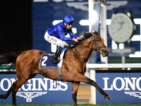 Review: Gr.1 Dubai Sheema Classic