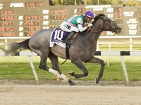 Tacitus In While Country House Out Of Gr.1 Belmont Stakes