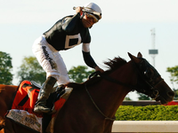 Review: Belmont Stakes (Race Result 2019, Race Video, Race Info)