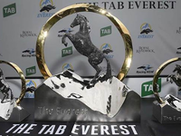 Flower's Everest slot put to tender