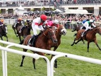 Laccario Romps To Victory In The Deutsches Derby