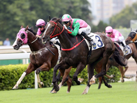 Size Claims 11th Premiership Title at HKJC Season Finale