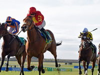Preview: Irish Oaks (Race info, Racevideo, Raceresult 2018, Runnner list 2019)