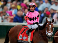 Maximum Security Earns Breeders' Cup Classic Berth With Haskell Score