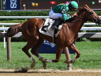 Review: Gr.1 Travers Stakes 2019 ( Horses, Racecard, 2019 Video)