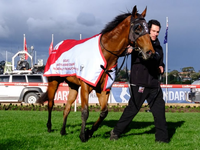 Nicconi Sprinter Secures Group Two Win