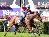 Review: Gr.2 Theo Marks Stakes 2019 ( Horses, Racecard, 2019 Video)