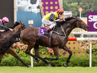 Cliff Brown: Sourcing Only The Best For Singapore Racing