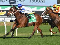 Review: Epsom Handicap 2019 ( Horses, Racecard, 2019 Video)