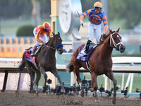 Review: Gr.1 Breeders' Cup Future Stars Friday Raceday 2019 ( Horses, Racecard, 2019 Video)