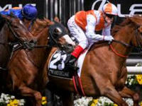 After The Dust Settles - Gr.1 Melbourne Cup Review