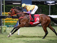 Playa Del Puente and Extra Brut Headline The HK Derby