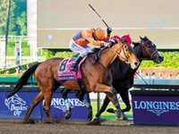 Beholder to Visit Bolt dOro in 2020