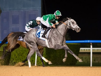 Preview: The World Has Descended At Meydan