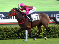 Waikuku To Go For Gold In Gr.1 Stewards' Cup