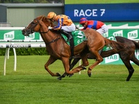 Rip Van Winkle's Te Akau Shark Claims Chipping Norton Stakes