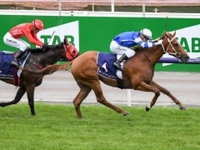 Gytrash wins Gr.1 Black Caviar Lightning