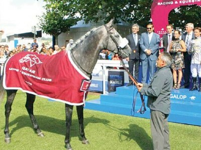 PREVIEW & TRIFECTA - Tayf Remains Favourite in The Arabian W ... Image 1