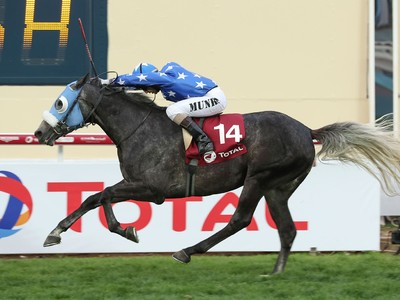 PREVIEW & TRIFECTA - Tayf Remains Favourite in The Arabian W ... Image 9