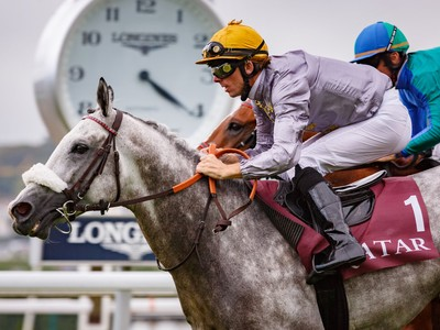 PREVIEW & TRIFECTA - Tayf Remains Favourite in The Arabian W ... Image 8