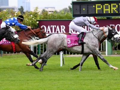 PREVIEW & TRIFECTA - Tayf Remains Favourite in The Arabian W ... Image 4