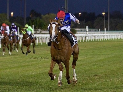 PREVIEW & TRIFECTA - Tayf Remains Favourite in The Arabian W ... Image 2
